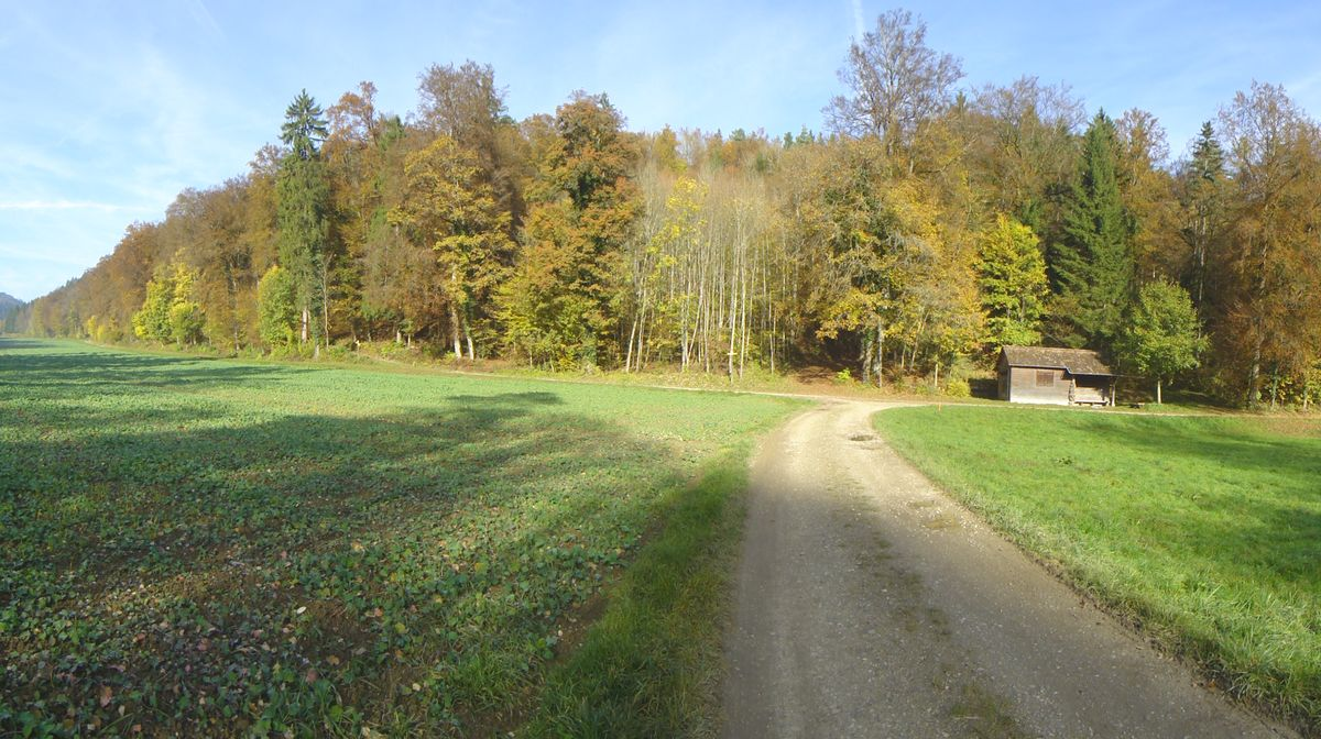 141102_Bike_Hagen_05