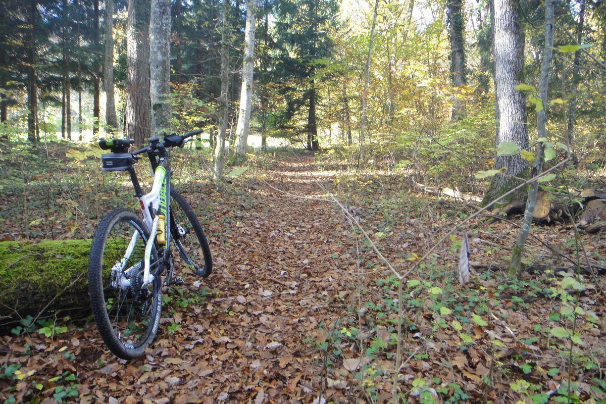 141102_Bike_Hagen_07